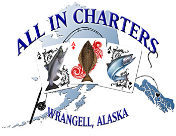 All In Charters